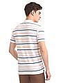 Ruf & Tuf Regular Fit Striped Polo Shirt