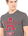 Aeropostale Heathered Regular Fit T-Shirt